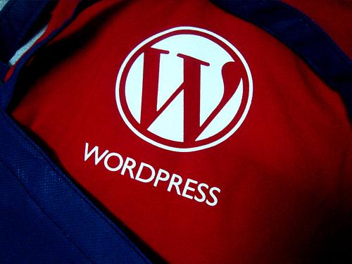 wordpress ロゴのついたシャツ